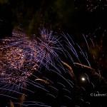 ThamesFestival2011_-8