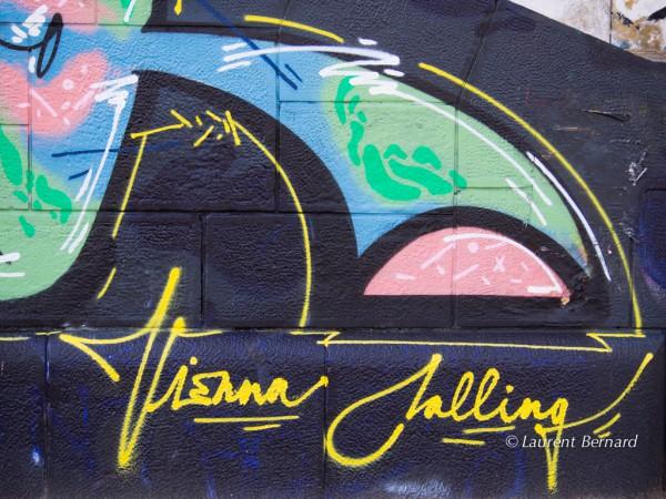 ViennaCalling